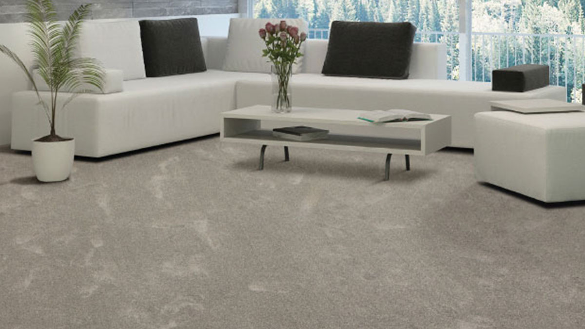 Carpet Luxurious Softness